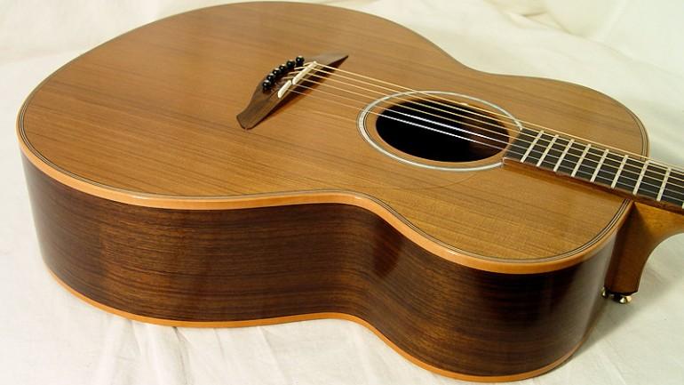 Avalon L25 Acoustic Guitar Review