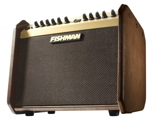Fishman LoudBox Mini Amplifier Review