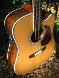Zager ZAD80CE Acoustic Electric Guitar