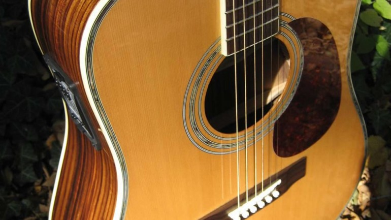 Zager ZAD80CE Acoustic Electric Guitar Review