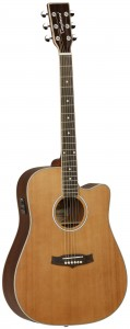 Tanglewood T Series