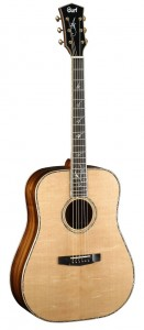 Cort Guitars 20th Anniversary EARTH