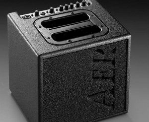 AER Alpha 40W Acoustic Guitar Amplifier